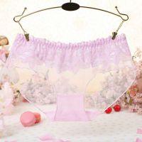 P298 - Celana Dalam Panties Hipster Pink Transparan, Renda Bunga - Thumbnail 1