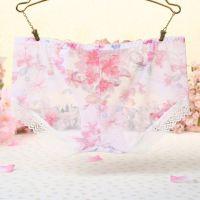 P304 - Celana Dalam Panties Hipster Putih Transparan, Bordir Bunga - Thumbnail 2